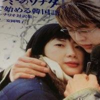 冬のソナタではじめる韓国語。