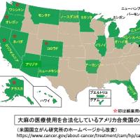 医療大麻の世界の動き