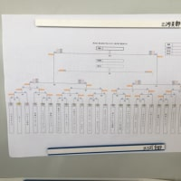 春の愛知県予選