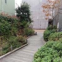 街ナカみどり   マルイ中野    早春の四季の庭・水辺の庭