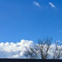 冬の葉山Blue