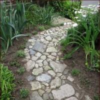 小道にポーチュラカを植えました