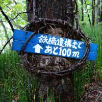昭和新山鉄道遺構公園 8月30日 2016年