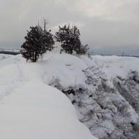 雪の遊歩道を歩く(その3終わり)