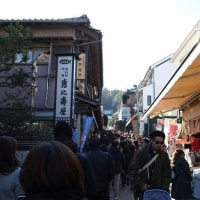 異国情緒あふれる港町  横浜(455) 江の島初詣(2)