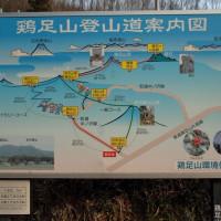 酉年計画第三弾 ~鶏足山 with ミツマタ~