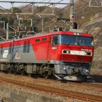 2017年3月25日 東海道貨物線 東戸塚 EH500-34 2079レ