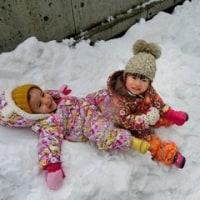 たんぽぽ組~雪遊び楽しんでます!☆ほうこうちそうえん