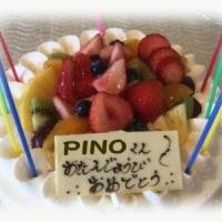 PINO の9回目の Birthday