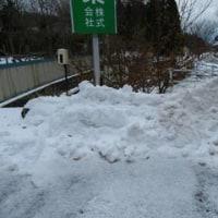 雪捨て場や通路と化したお花ゾーン(・_・;)