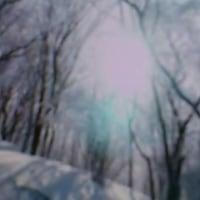 一句詠にて ……  ニャンコ姫  LOVE  GREEN