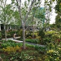 私たちには緑の木々や、せせらぎの水、そして土も必要だ~訪日客も望んでいる~