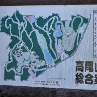 高尾山公園散策
