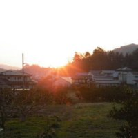 日没の風景と活け花