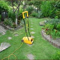 芝刈りとサルスベリの剪定について