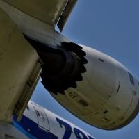 迫力抜群:頭上を着陸機あっという間に轟音を残して着陸。