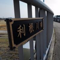 江戸川~利根川サイクリング、少し。