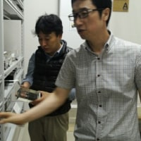 生物多様性地域戦略の日本現地調査の報告