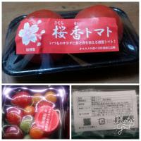 桜香トマト、桜香カラフルミニトマト トマトのくん製です。オルフィラ・カベルネ・ソーヴィニヨン2013と。