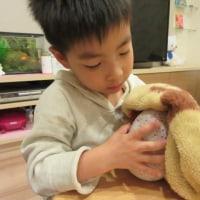 圭ちゃん6歳になりました!