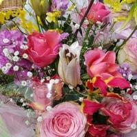 1月13日 明日の誕生花・ゆかりの花 花言葉は?(*^O^*)☆
