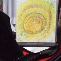 フラワーメッセージアート (1)光の花☆ エニシダ