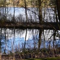 丘の上から池の畔へ