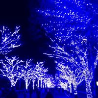渋谷・青の洞窟のイルミネーション