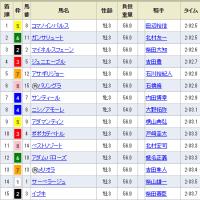 [京成杯(G3)]ルーラーシップ産駒イブキ最下位。。 トホホ(^_^;