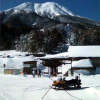 スキーに行ってきた。