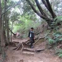 高尾山 一人登山