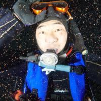 沖縄県瀬底島のサンゴの産卵観察終了