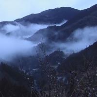 平成29年3月21日・今朝の東祖谷2.7℃