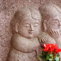 鷹野橋の婆多婆多(バタバタ) 170606