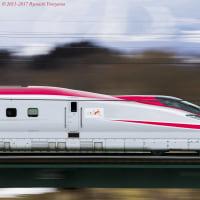 「秋田新幹線開業20周年記念号」は往時以上の愛嬌で