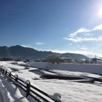 ◯丹波市青垣町 雪景色◯