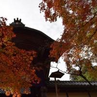 光明寺と正法寺