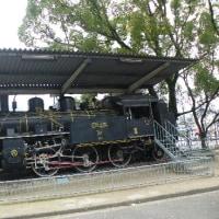 白の菊と宇和島市和霊公園の蒸気機関車