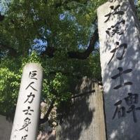 【五月の夏日、午後の散歩】門前仲町編
