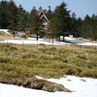 長野県南佐久郡佐久穂町から茅野市に抜ける最高地点の麦草峠は、雪景色でした