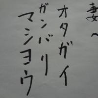 回顧録~今年の春を綴る~