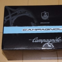カンパニョーロ ポテンツァのブレーキアーチだけは何とかしたい
