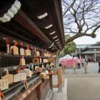 2年ぶりに国府宮神社へ行きました。
