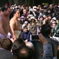 🌼住吉大社 で、四横綱奉納土俵入り🌼
