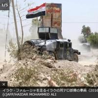 イラク  ファルージャ完全制圧で表面化する難民問題とスンニ派住民への対応 IS後のイラクは?