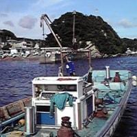 LIVE INFO. 2013.7.13(土) 佐島・漁港祭