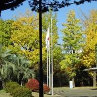 2016-11-18 今日の記録 英会話at小平市中央公民館