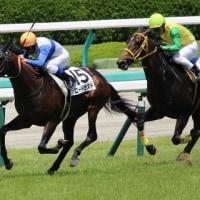 ロードゼスト:勝利レース後コメント!!