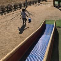 孫と公園に行った
