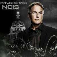 NCIS ネイビー犯罪捜査班  どのシーズンが好き?